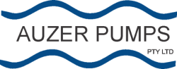 Auzer Pumps